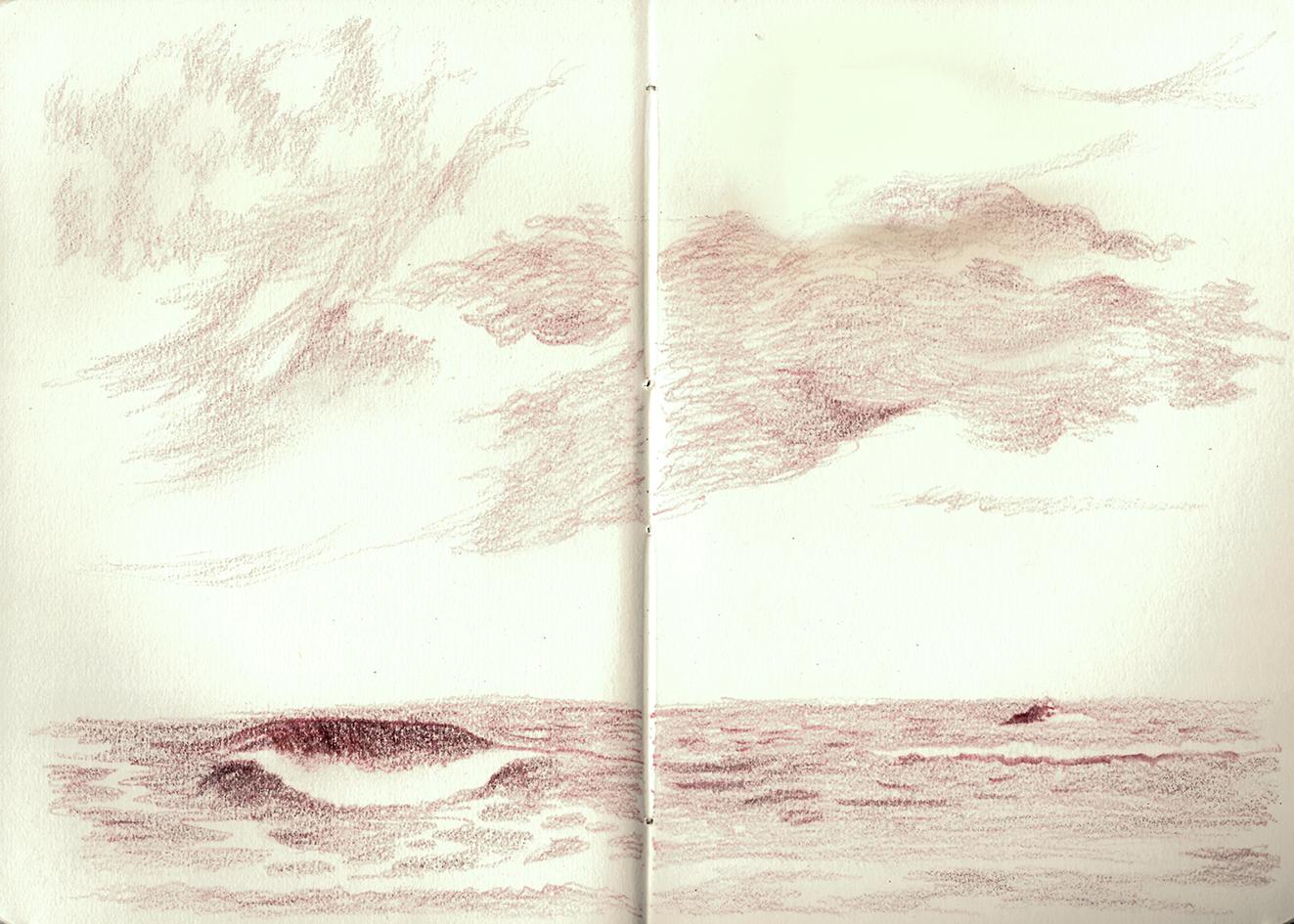 sea study.png